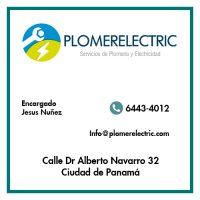 plomolectric